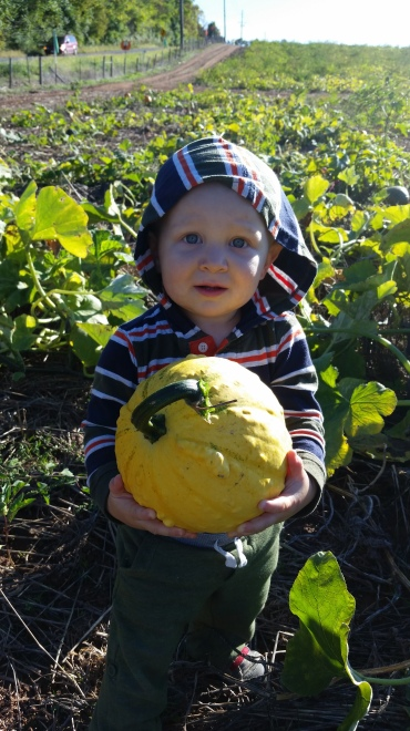 Graham insisted on a yellow pumpkin.